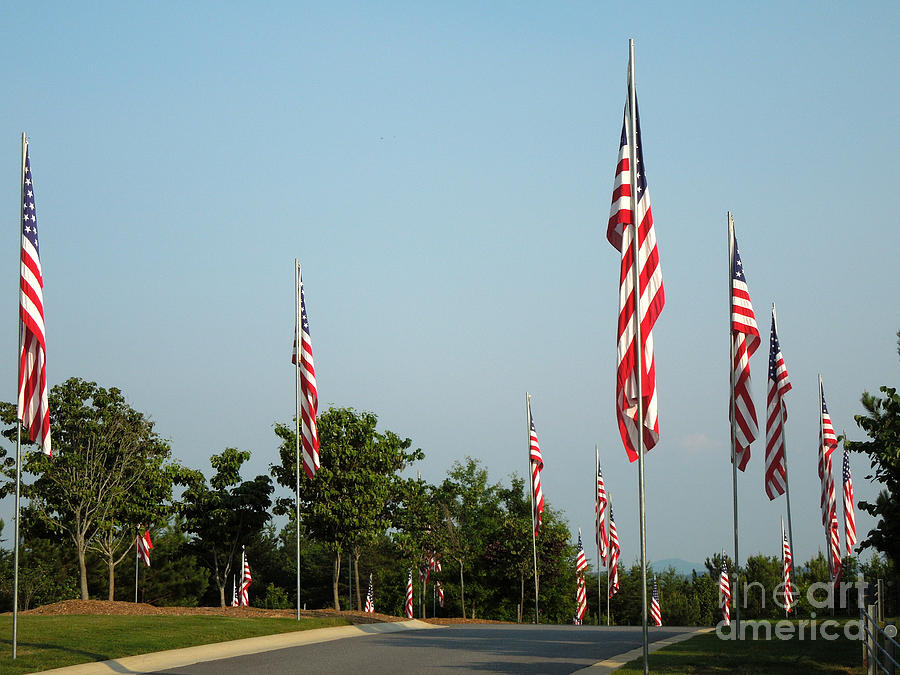Flag Photograph - Many American Flags by Renee Trenholm