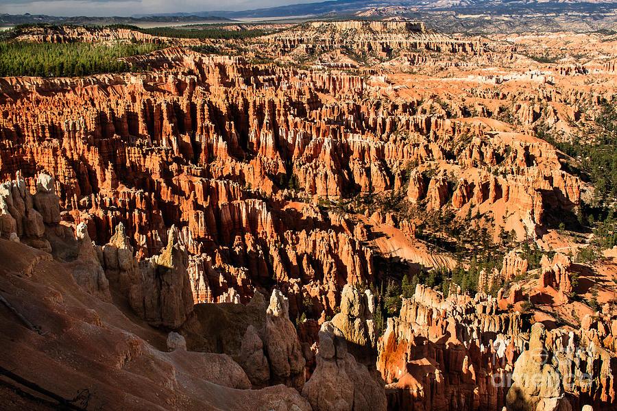 Rock Formations Photograph - Many Hoodoos by Robert Bales