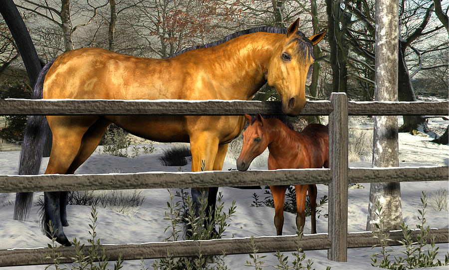 Mare And Foal In Winter Digital Art  - Mare And Foal In Winter Fine Art Print