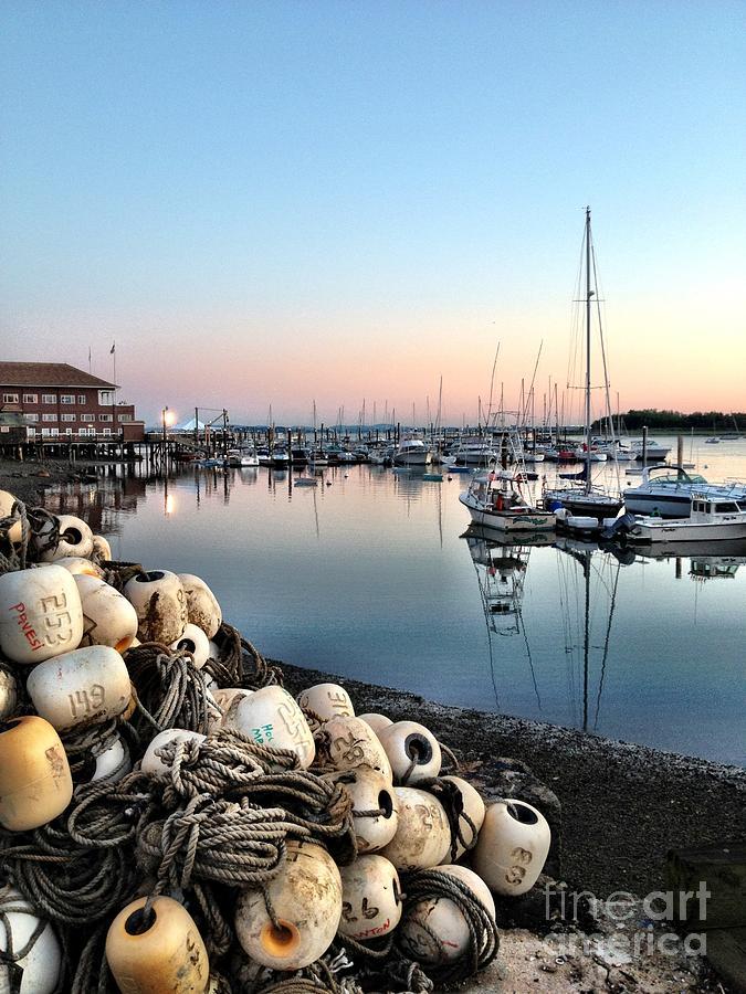 Marina Sunset Photograph