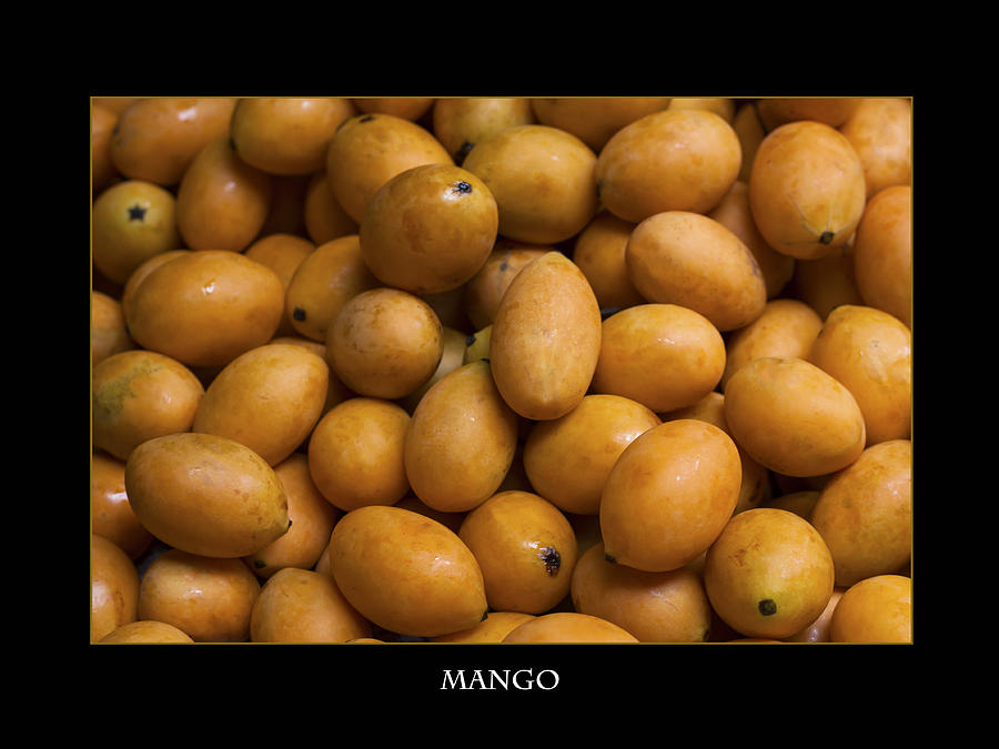 Market Mangoes Against Black Background Photograph