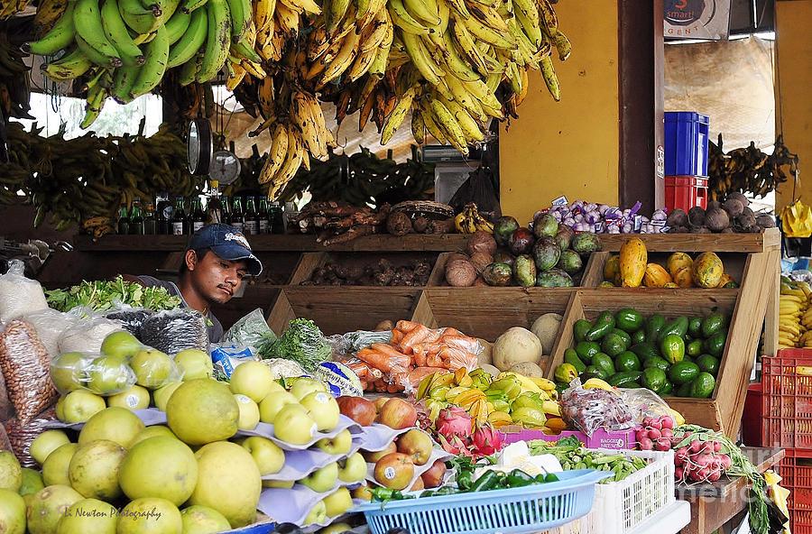 Fruit Photograph - Market Vendor by Li Newton