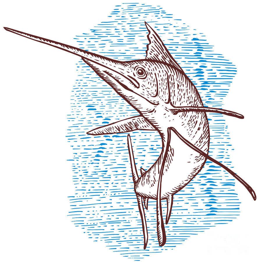 Marlin Woodcut Digital Art
