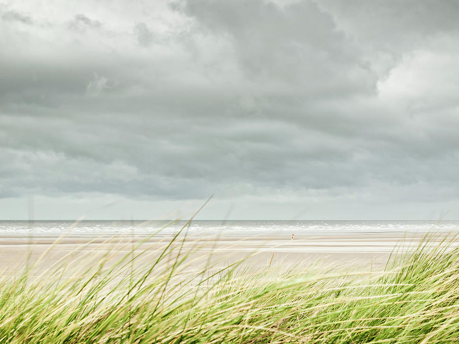 Marram Grass On Beach By Sea Photograph