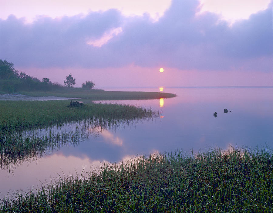 00175762 Photograph - Marsh At Sunrise Over Eagle Bay St by Tim Fitzharris