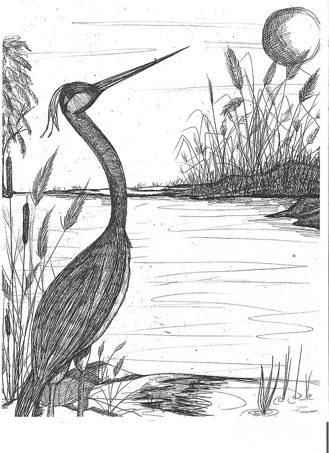 Marsh Life by Patricia Carter-Mitchell