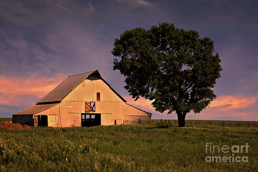 Marshalls Farm Photograph  - Marshalls Farm Fine Art Print