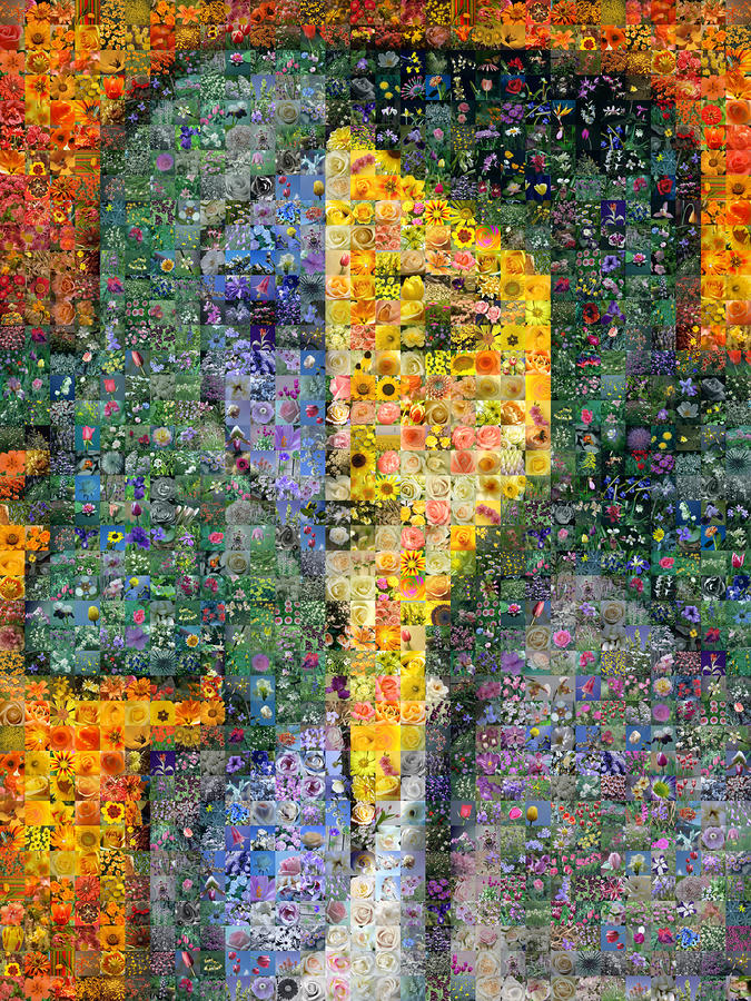 Matisse - Lydia Delectorskaya Digital Art