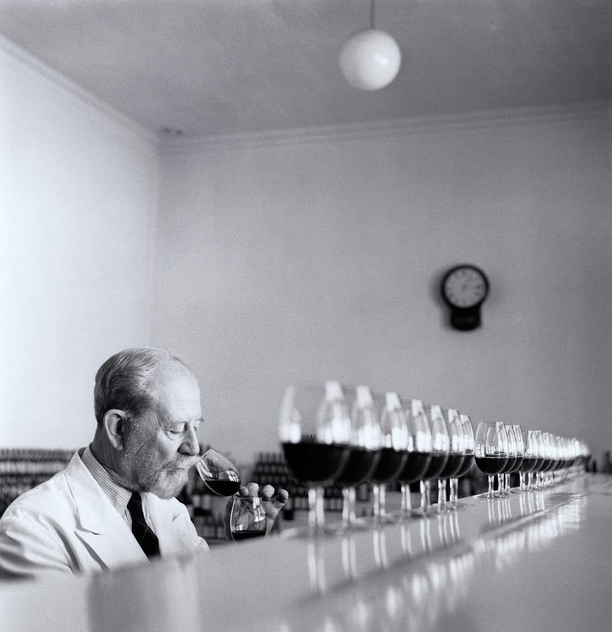 Mature Wine Tester With Row Of Glasses (b&w) Photograph