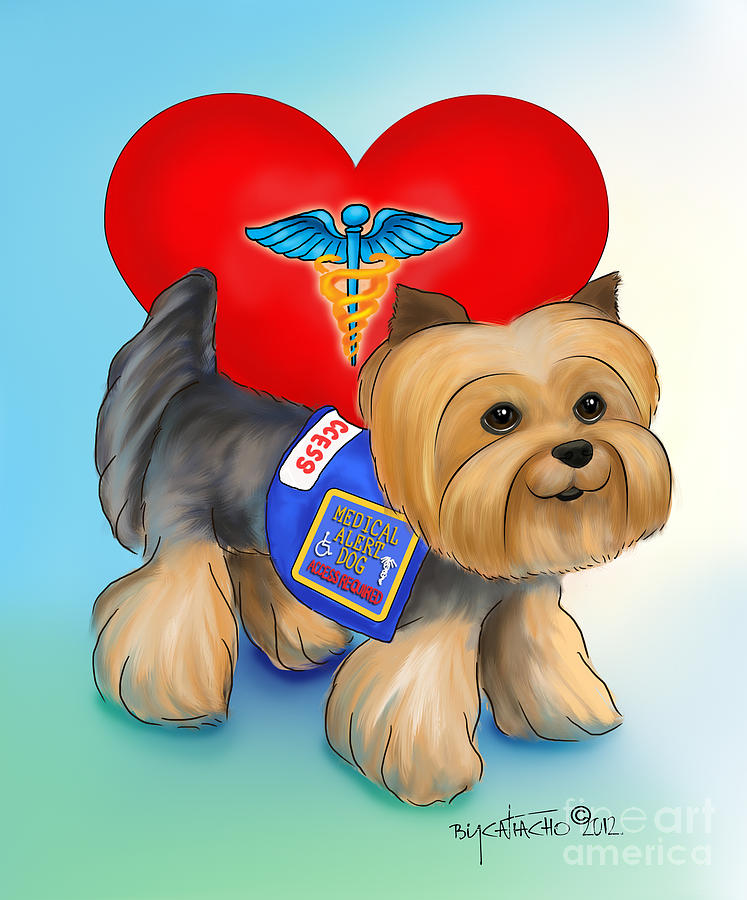Medical Alert Yorkie Mixed Media  - Medical Alert Yorkie Fine Art Print