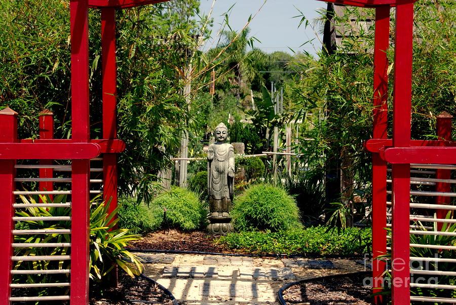 Meditation Garden Photograph