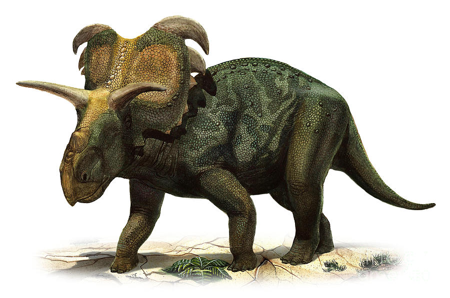 medusaceratops-lokii-a-prehistoric-era-sergey-krasovskiy.jpg