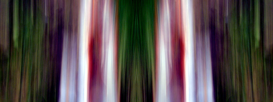 Abstract Photography Photograph - Mellow by Danny Lally