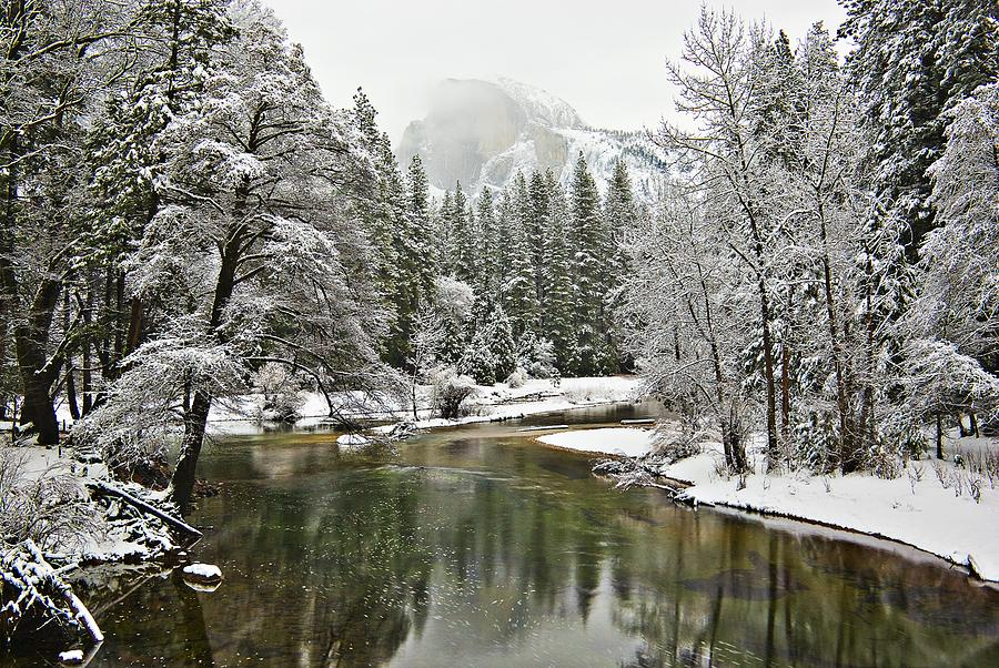 Merced River, Yosemite National Park Photograph  - Merced River, Yosemite National Park Fine Art Print