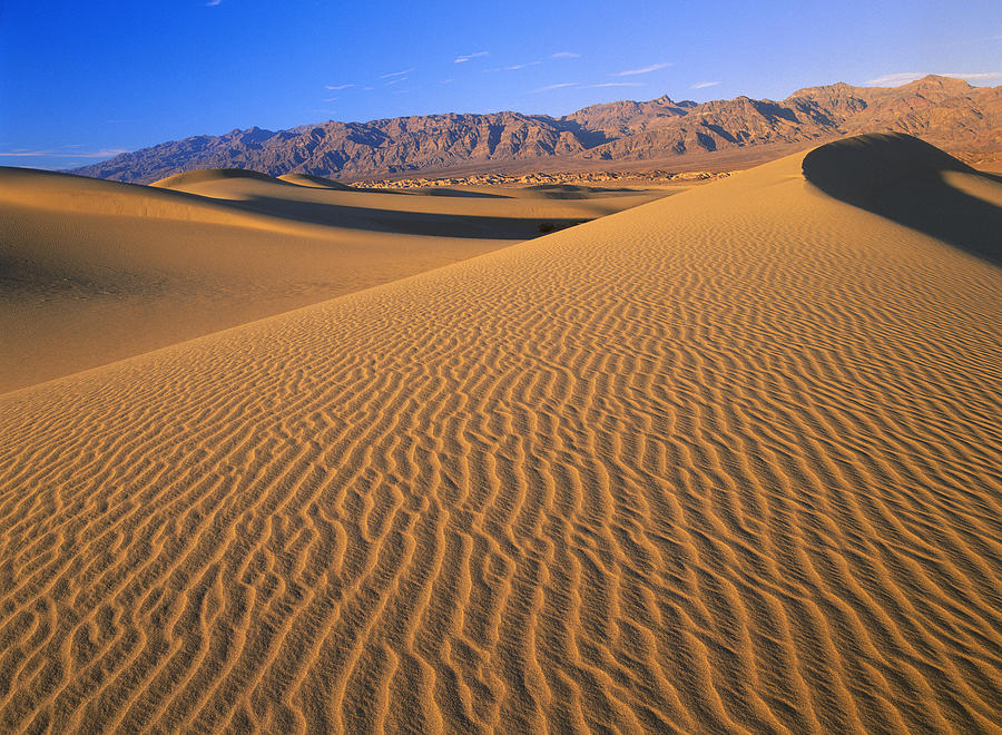 00173158 Photograph - Mesquite Flat Sand Dunes Death Valley by Tim ...
