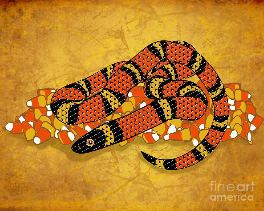 Mexican Candy Corn Snake Digital Art