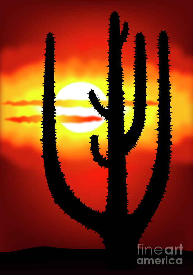 Mexico Sunset Digital Art  - Mexico Sunset Fine Art Print