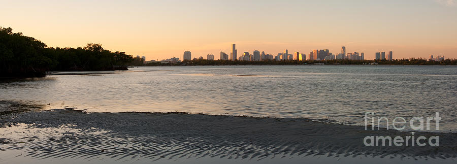 Miami At Low Tide Photograph