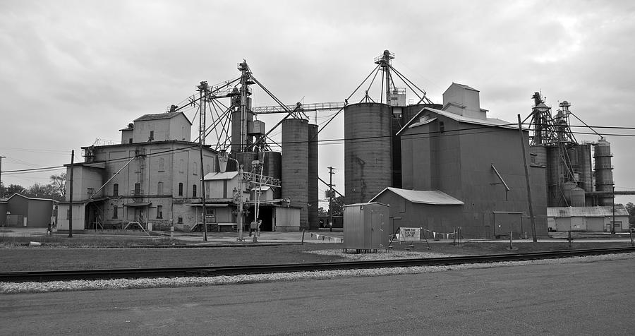Michigan Agricultural Commodities 2094 Photograph