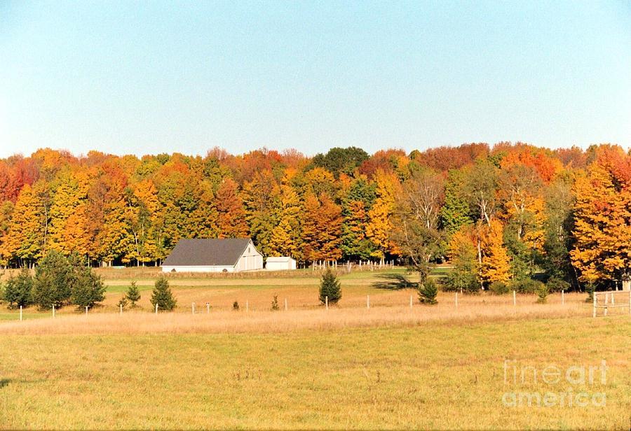 Barn Photograph - Michigan Farm by Crissy Sherman