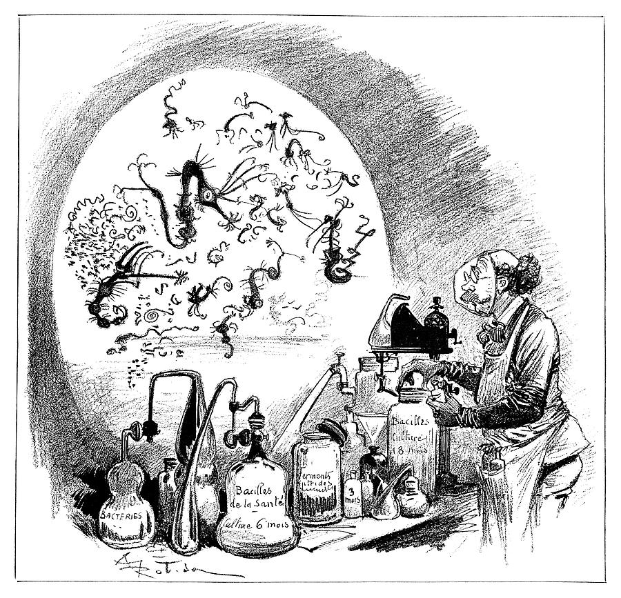 Microbiology Caricature, 19th Century Photograph