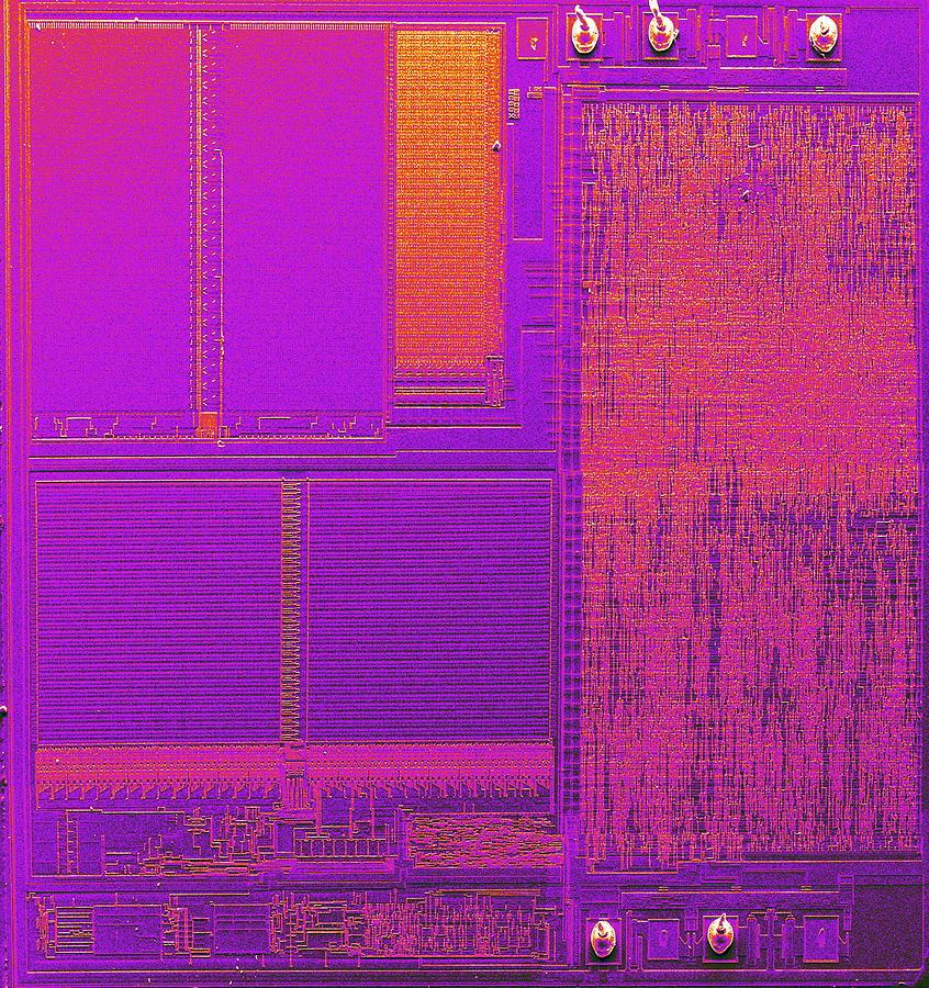 Microchip, Sem Photograph