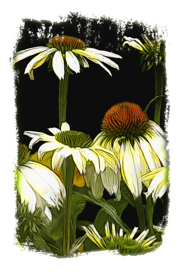 Midnight Daisies Painting  - Midnight Daisies Fine Art Print