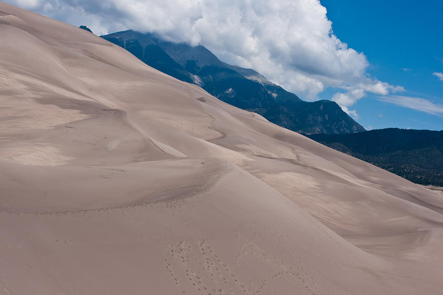 Sand Photograph - Miles Of Sand by Colleen Coccia