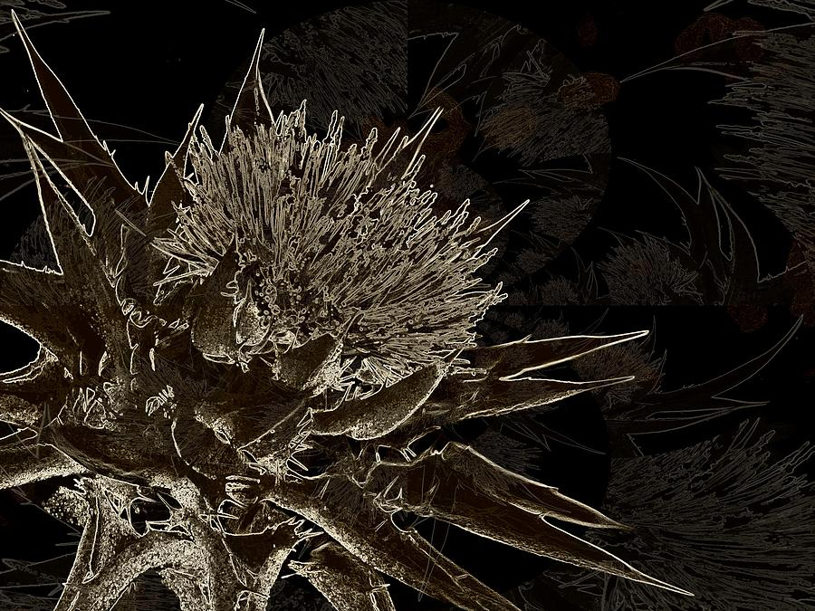 Abstract Realism Photograph - Milk Thistle In Sepia by Shirley Sirois