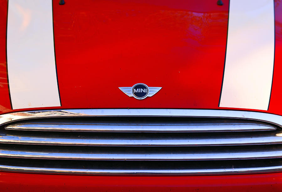 Mini Red Photograph  - Mini Red Fine Art Print