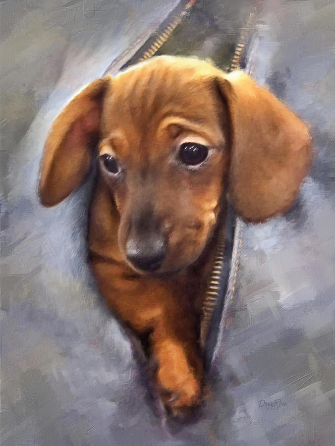 Miniature Dachshund Digital Art
