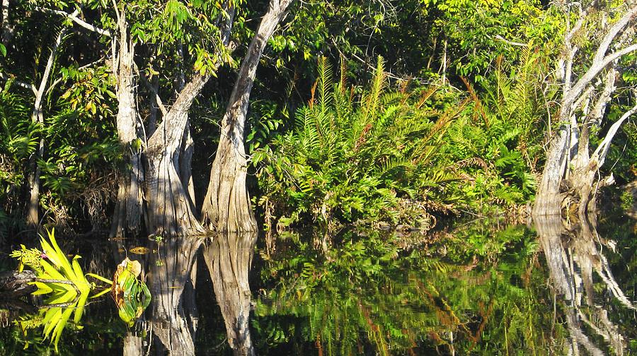 Mirror Pond Photograph