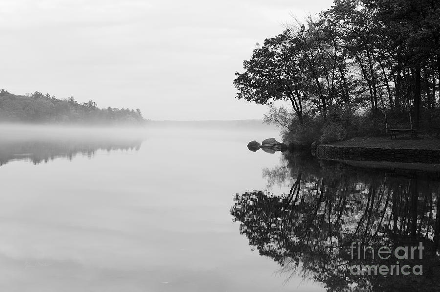Misty Cove Photograph  - Misty Cove Fine Art Print
