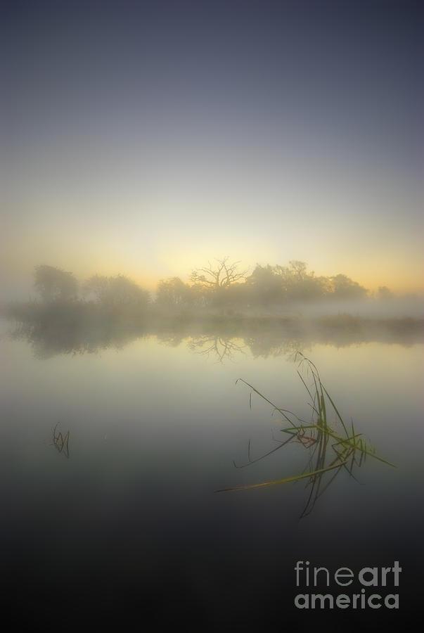 Misty Dawn 4.1 Photograph