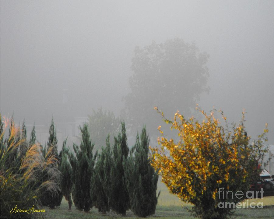 Misty Fall Day Photograph