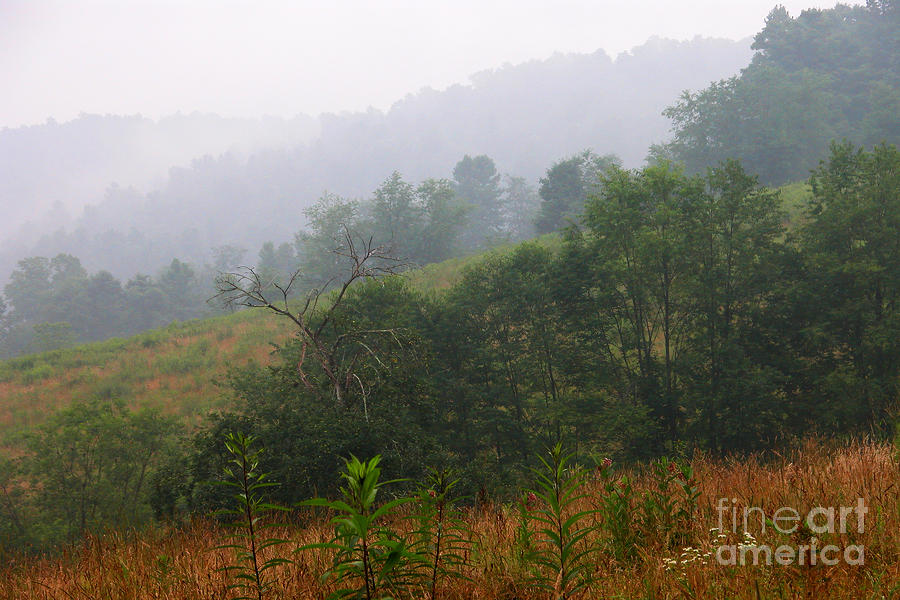 Misty Morning On The Farm Photograph  - Misty Morning On The Farm Fine Art Print