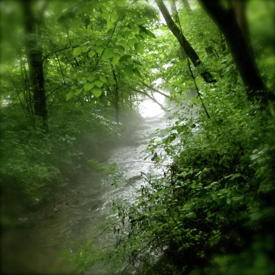 Misty Stream Pyrography