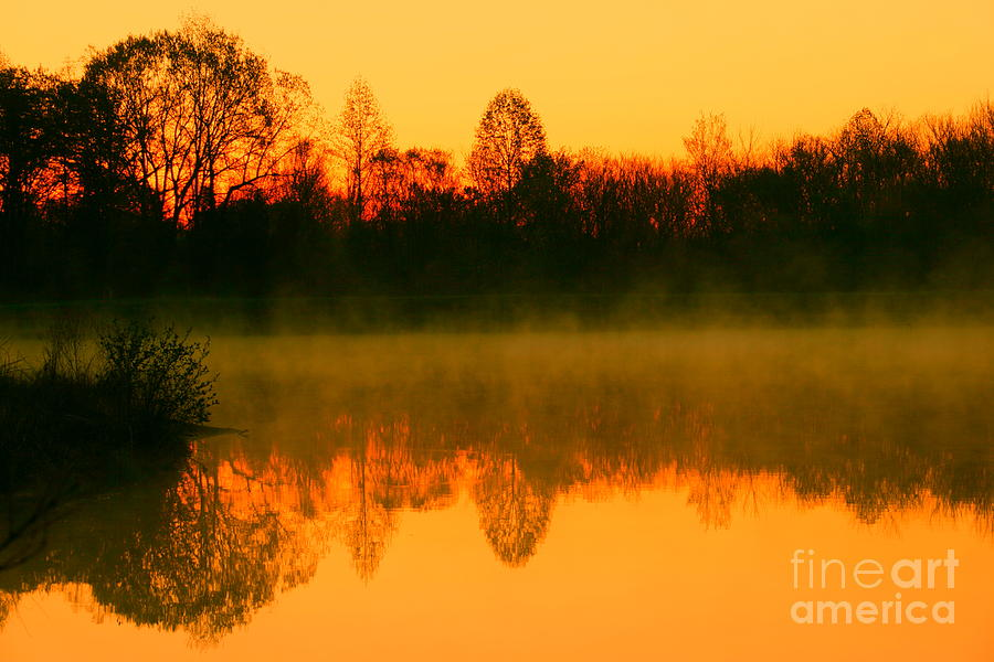 Misty Sunrise Photograph