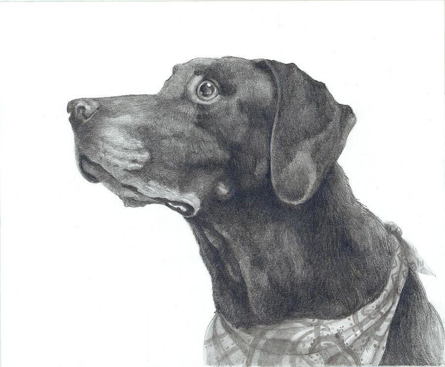 Mocha In Loving Memory Drawing