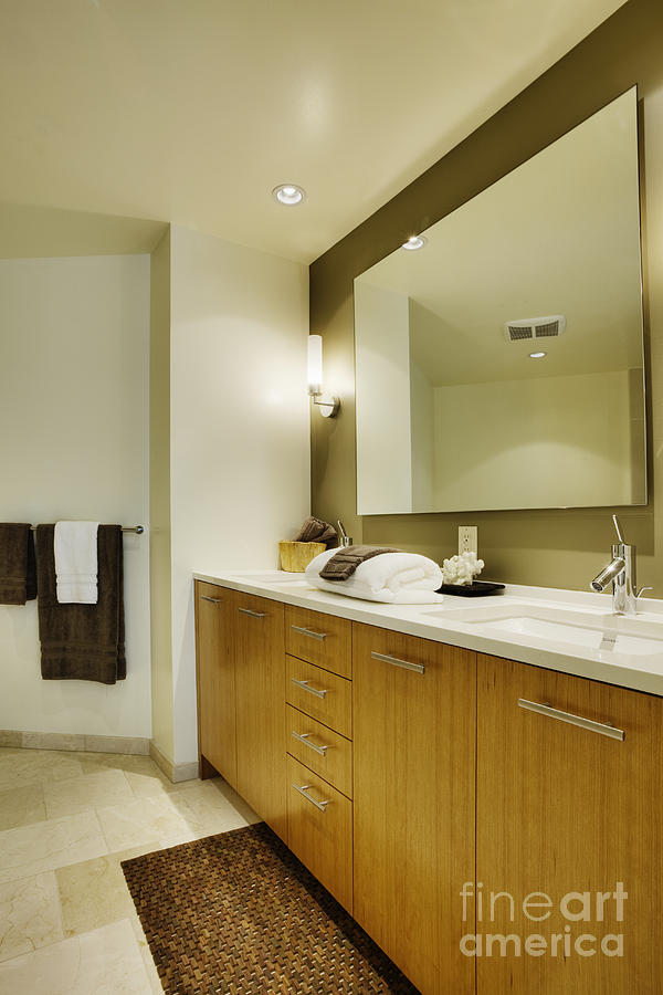 Modern Bathroom Interior Photograph  - Modern Bathroom Interior Fine Art Print