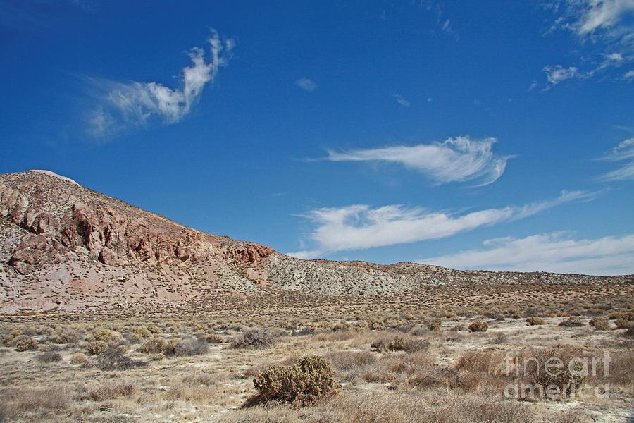 Mojave Desert California Photograph