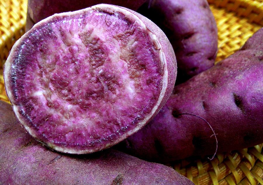 Molokai Purple Sweet Potatoes Photograph