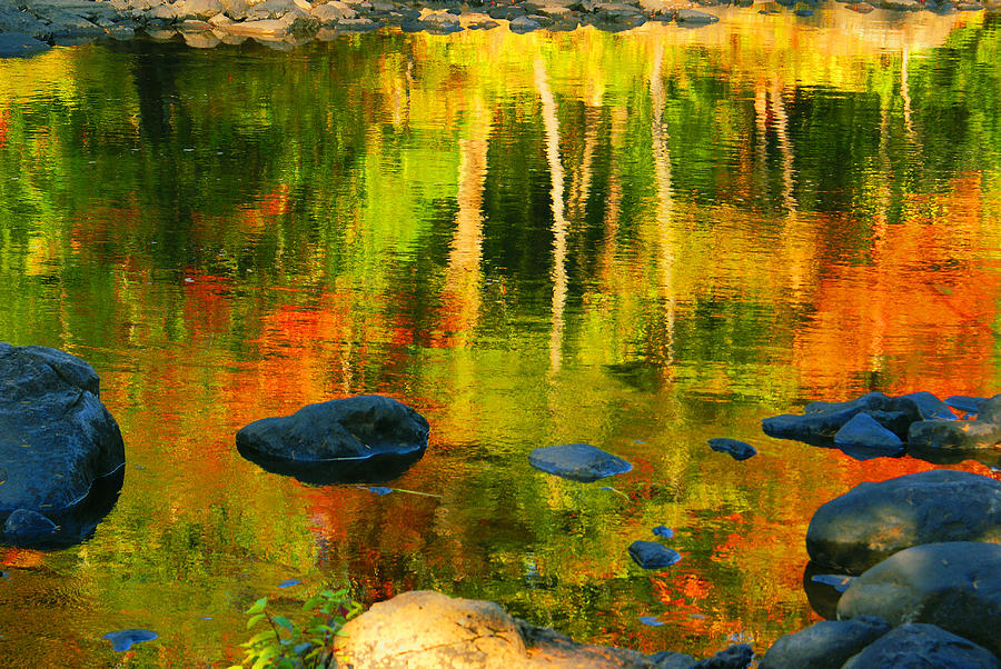 Monet Autumnal Photograph
