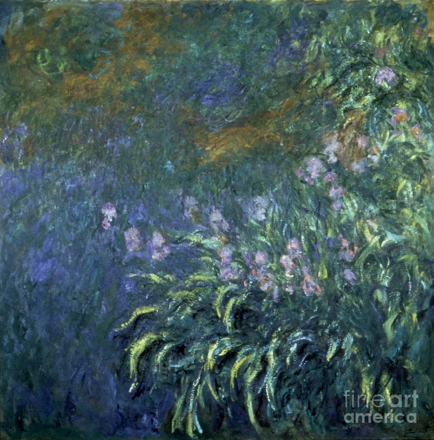 Monet: Irises By The Pond Photograph