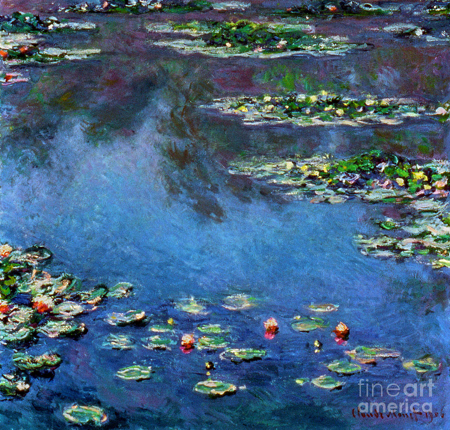 Monet: Waterlilies, 1906 Photograph