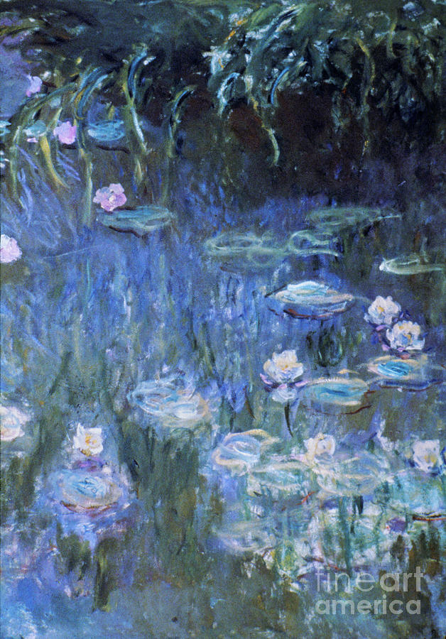 Monet: Waterlilies Photograph