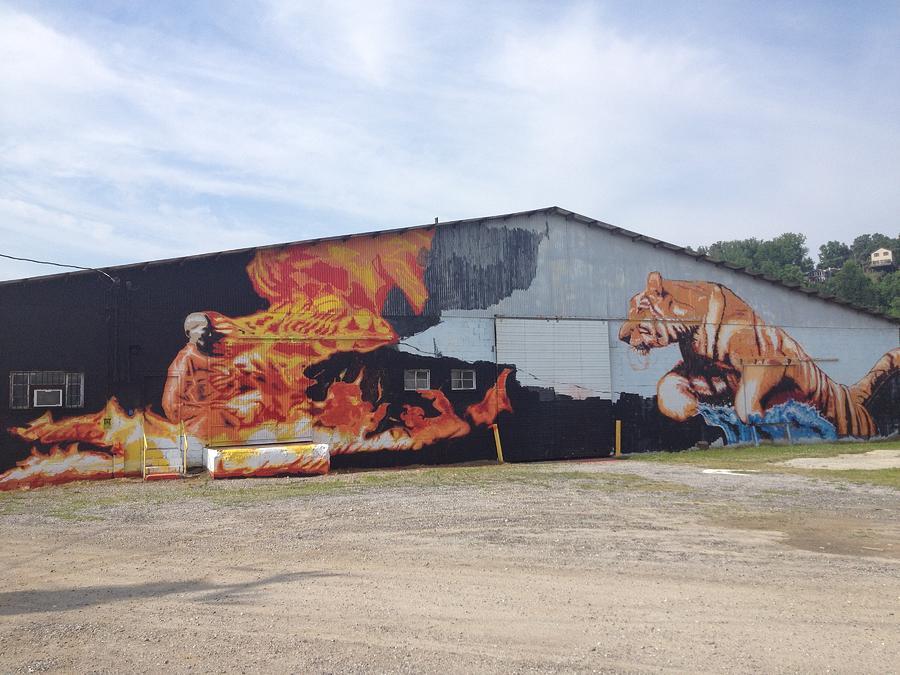 Monk And Tiger Mixed Media