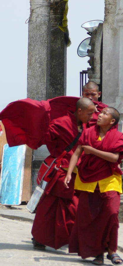 Monks Reality Check  Photograph