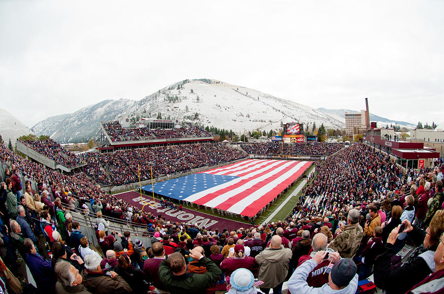 Montana Washington-grizzly Stadium Photograph  - Montana Washington-grizzly Stadium Fine Art Print