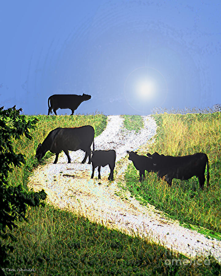Moo Cows Mixed Media  - Moo Cows Fine Art Print